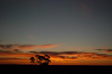 Sunset at Lightning Ridge
